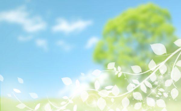 環境に優しい再生可能エネルギー